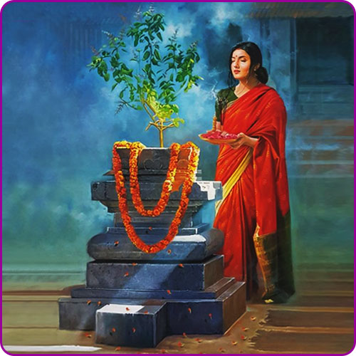 Tulsi in Hinduism and Tulsi Vivah