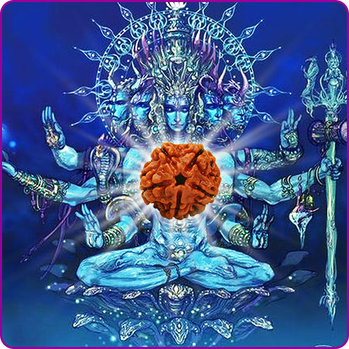 5 Mukhi Rudraksha: Benefits, Powers and Significance