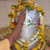 Largest Mercury Shivalingam