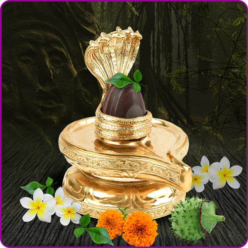 About: Lingam, Benefits and Story of Shiv lingam