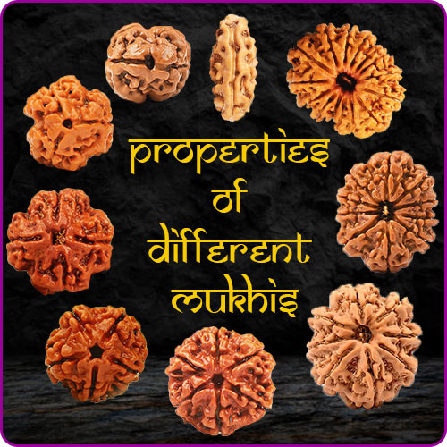 Properties of Different Mukhis