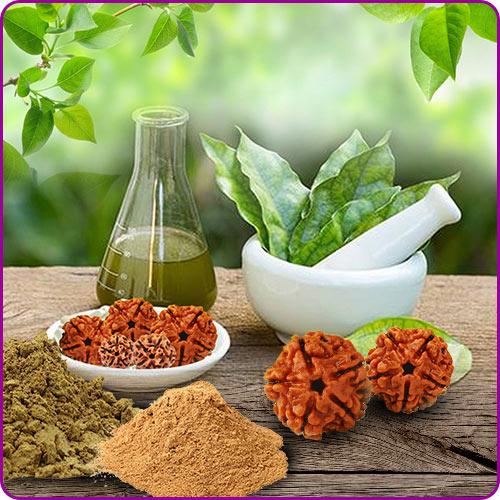 Rudraksha in Ayurveda Medicine