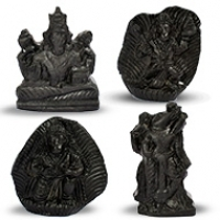 Shaligram Idols (Murti)