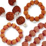 Nepal Rudraksha Kanthas Bracelets