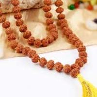7 mukhi Lakshmi Mala