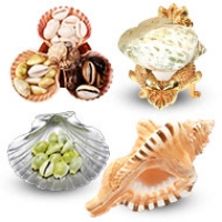 Chakra Vastu Shell Items