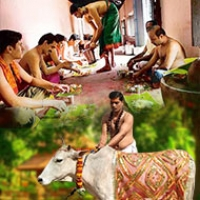 Cow Donation, Charity