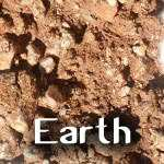 Earth (Prithvi) Element Energizers