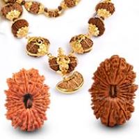 Rare Rudraksha Beads