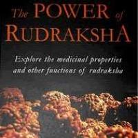 Chakra Healer Rudraksha