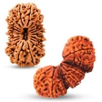 Collector Nepal Rudraksha beads