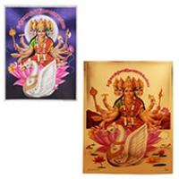 Gayatri Devi Pictures