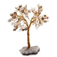 Gomati Chakra Vastu Tree