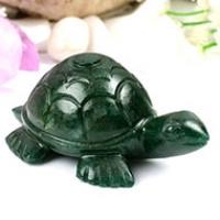 Kurma, Tortoise