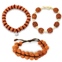 1 - 14 Mukhi Rudraksha Bracelets