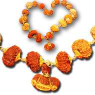 Significance of<br />