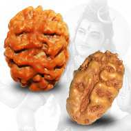 Benefits of <br />