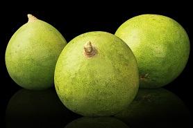 Bel Fruit