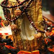 Rudraksha and Astrology