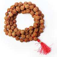 In Todays Context why should one wear Rudraksha