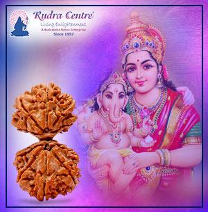 Gauri Ganesh Rudraksha