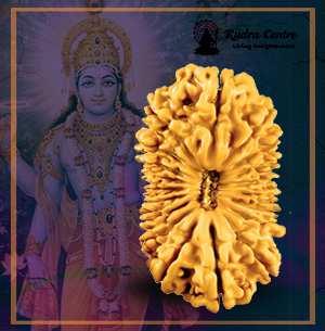 19 Mukhi Rudraksha