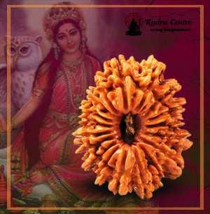 18 Mukhi Rudraksha