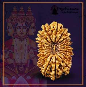20 Mukhi Rudraksha