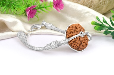 11 Mukhi from Nepal in Silver Bracelet