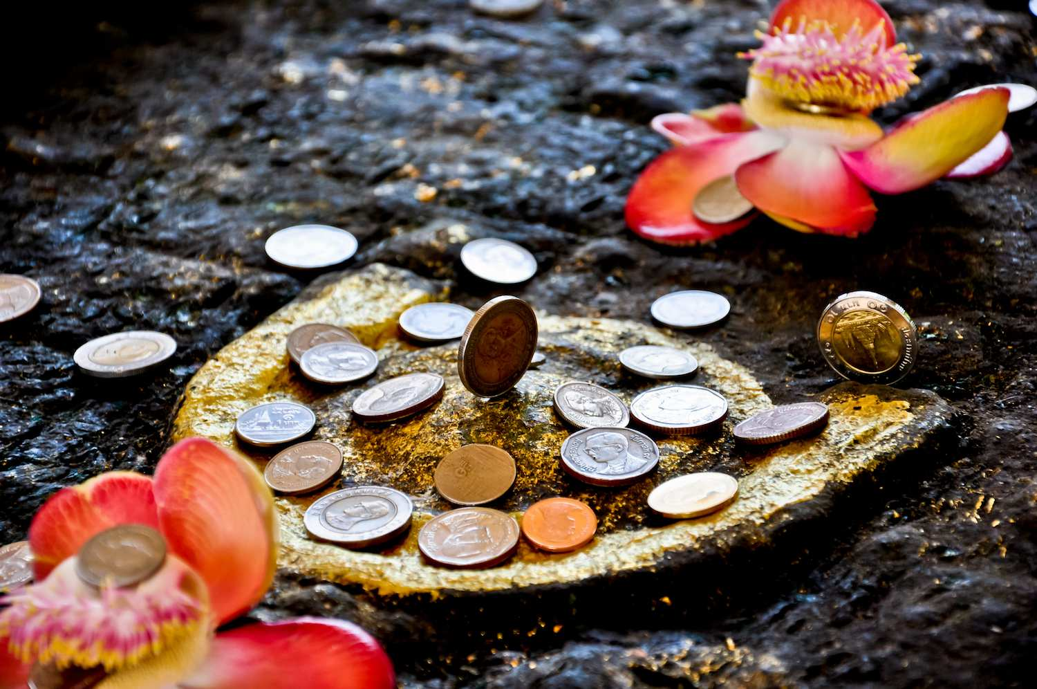 How to Gain Wealth and Success? | Rudraksha therapy