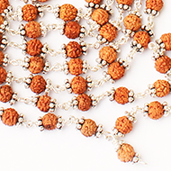 Rudraksha punchmukhi mala in silver with silver chakris