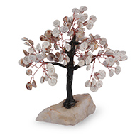 Gomati Chakra Tree - II