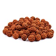 Five Mukhi Loose Beads from Java - 18 mm
