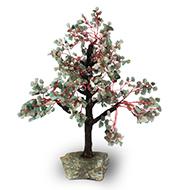 Green Jade Vastu Tree - I