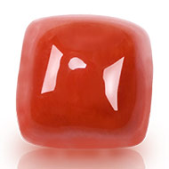 Red Italian Coral - 3.85 carats