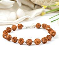 Rudraksha punchmukhi Bracelet in silver wire