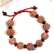6 Mukhi Nepal Rudraksha bracelet with  Red Sandalwood beads