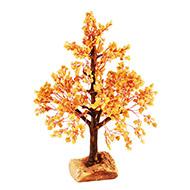 Yellow Jade Vastu Tree - I