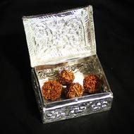 Gift of Shiv-Parivaar
