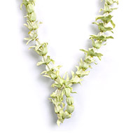 Fresh Aak Flower Garland