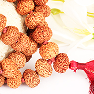 Collector 9 mukhi Durga Shakti Mala - Java