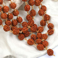 Rudraksha mala in gold polished copper - 10mm