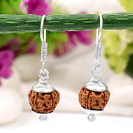 Earrings of Semi chikna Rudraksha Beads - Design II