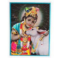 Bal Krishna Glittering Photo