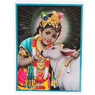 Bal Krishna Glittering Photo