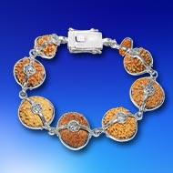 Sanjeevani Power - J - Collector beads