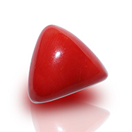 Italian Coral triangular- 20.50 carats
