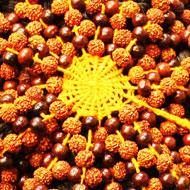 Rudraksha and Rose wood beads Meditation cap