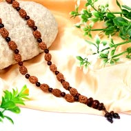 3 mukhi Mahajwala mala with Red Sandalwood beads