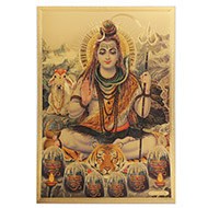 Meditating Shivji Photo in Golden Sheet - Large